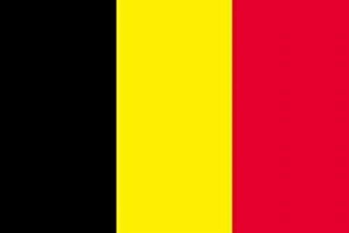 世界の 国旗 スポーツ 観戦 応援 各国 料理 日本 アメリカ イギリス フランス イタリア etc 90㎝×150㎝ (ベルギー)