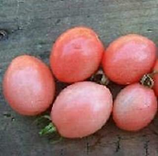 Tomato Thai Pink Egg 1,000 Seeds Need More? Ask