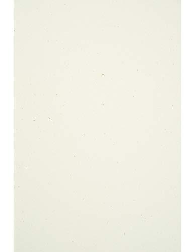 Netuno 50 Blatt Ecru Natur-Karton DIN A4 210x 297 mm 240g Flora Anice Recycling-Karton A4 Feinkarton Öko Recycled Karten-Karton Umwelt Karton Natural Bastelkarton hochwertig für Dekoration