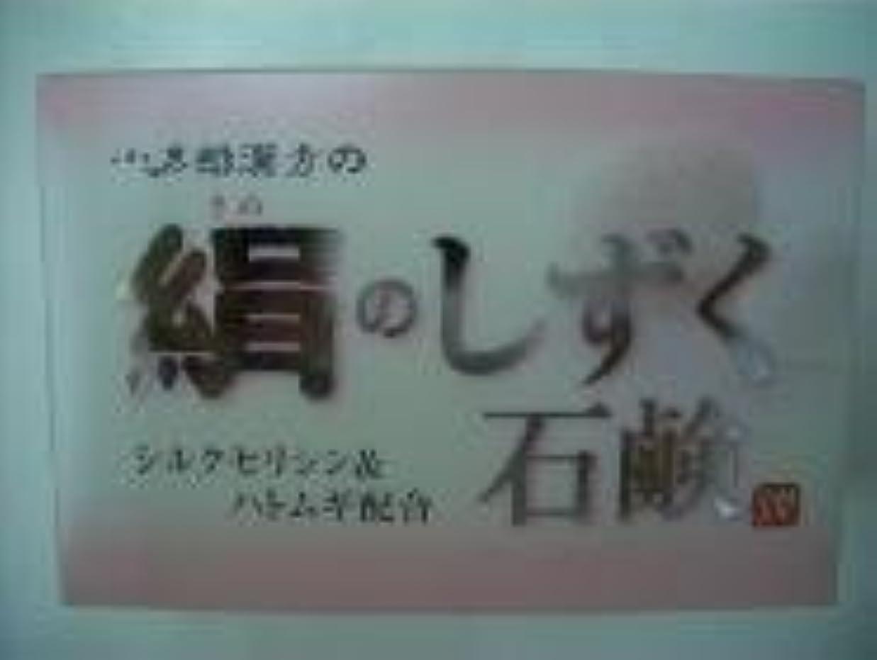 電信献身効率的絹のしずく石鹸 コタロー80g4個