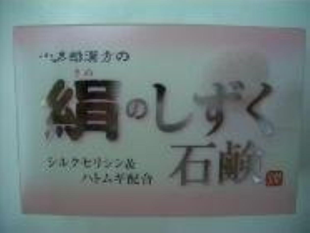 通知する舌従順な絹のしずく石鹸 コタロー80g12個 +240g進呈