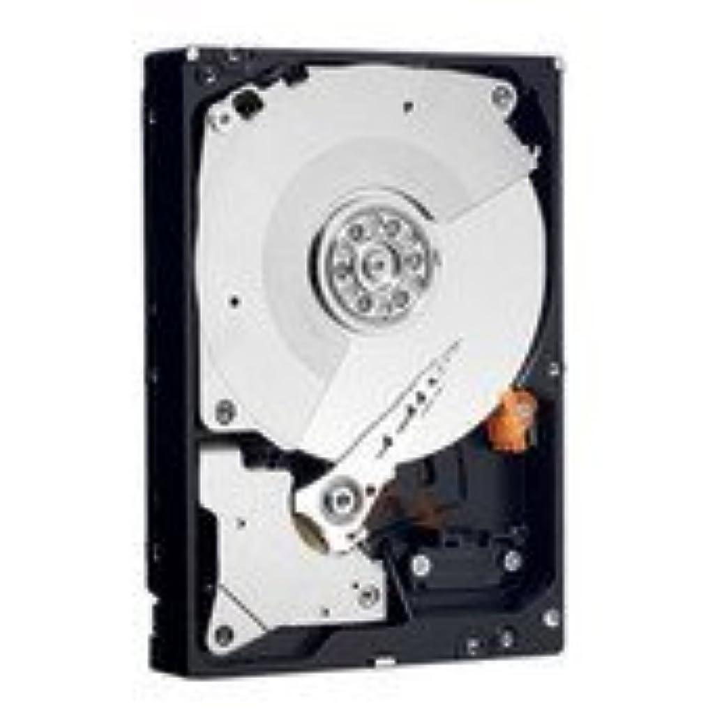 慎重ホームレス失礼なWestern Digital 1 TB RE3 SATA 3 Gb/s 7200 RPM 32 MB Cache Bulk/OEM Enterprise Hard Drive - WD1002FBYS [並行輸入品]