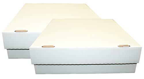 CAGO 2 Riesen Deck-Boxen - Aufbewahrung (weiß) für je 4000 Karten (Magic / Pokemon / YuGiOh Karten) + Collect-it Hüllen