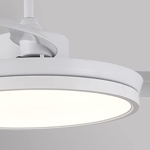 wonderlamp W-V000043