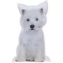 Homestreet Cojín con forma de perro, tamaño grande, imagen fotográfica, relleno con 6 razas a elegir (WESTIE)
