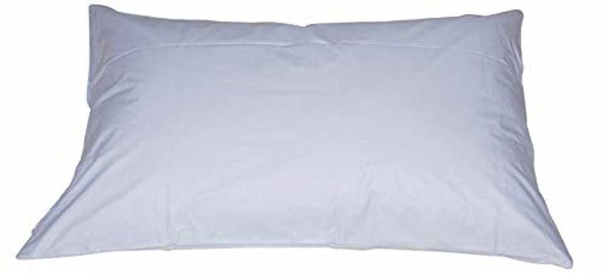 ピクニックいじめっ子改善ダニブロック 枕カバー 43×63cm 防ダニピロケース 43 63 ブルー