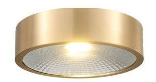 miwaimao Lámpara de techo de pared de bronce para todas las superficies, montaje en superficie, para salón, fondo, techo, ultrafina, LED Porch, lámpara de techo (color: 7 W, tamaño: diámetro 12 cm)