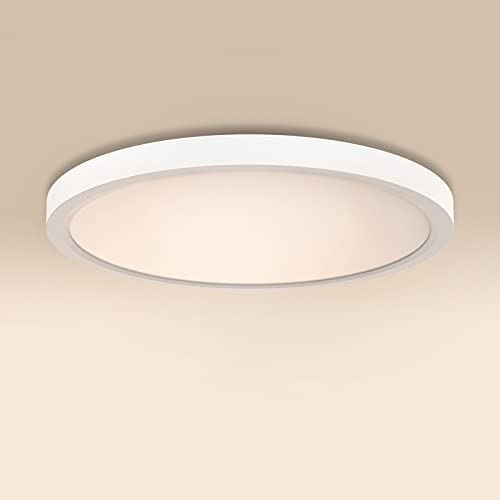 ISUDA LED Lámpara de Techo Moderna Downlight 18W Blanca 4000K 1600LM Impermeable Plafones Led para Baño Cocina Pasillo Sala de Estar Ø23cm [Clase de eficiencia energética A+]