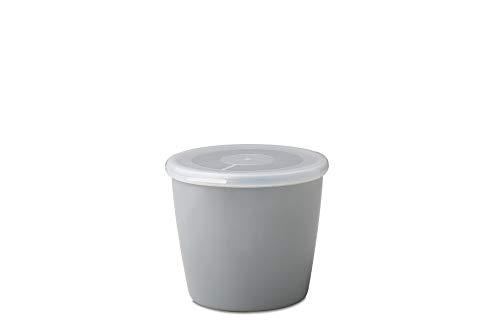 Rosti Mepal 106140043400 Boîte de Conservation Mélamine Gris 13,2 x 12 x 10,2 cm 650 ml