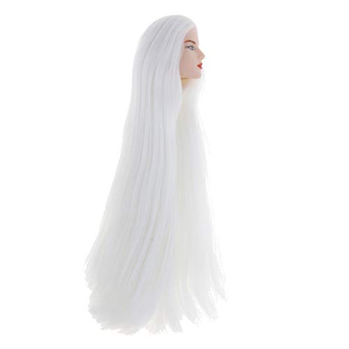 Fityle 23cm Length White Hair Male Head Ball Jointed Doll Parts for 1/6 BJD DIY Custom Parts Supplies