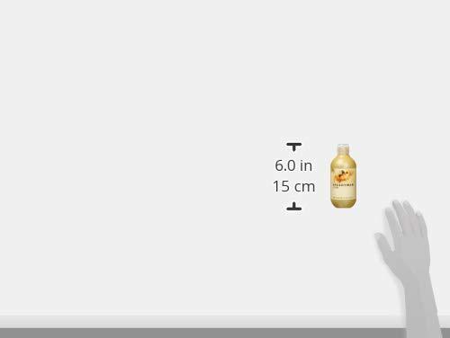 ゾイック(ZOIC)スピーディワントリートメントシャンプーCチワワ250ml