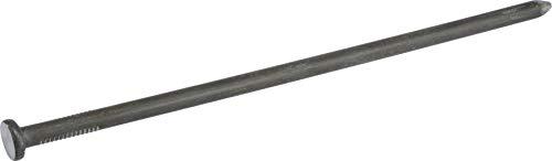 HILLMAN FASTENERS 461490 Bright Common Spike Nails, Silver