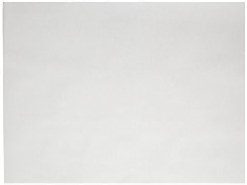 Sax Sulphite Drawing Paper 70 lb 18 x 24 Inches ExtraWhite Pack of 500  206303