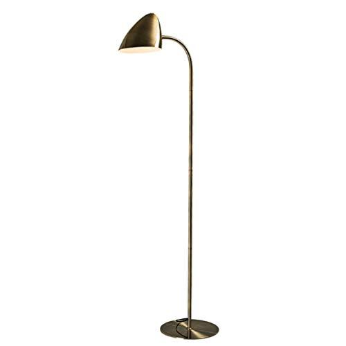Lámparas de pie Regulable Lámpara de pie de cuello de cisne, lámpara de pie clásico de lectura de pie de luz con el colgante de la cortina de lámpara minimalista de noche Lámpara de pie Lampara de pis