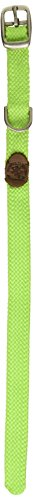 """Mendota Double Junior Collar, Lime, 9/16"""" Up to 12"""""""