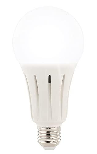 Luminea Tageslichtlampe: High-Power-LED-Lampe E27, 24 Watt, 2.452 Lumen, tageslichtweiß 6.500 K (LED Leuchtmittel E27 kaltweiß)