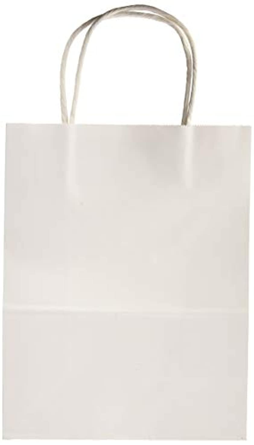 Darice BAG230 13Piece, White Value Pack Paper Bag, 4.25 by 8 by 10.25 inch