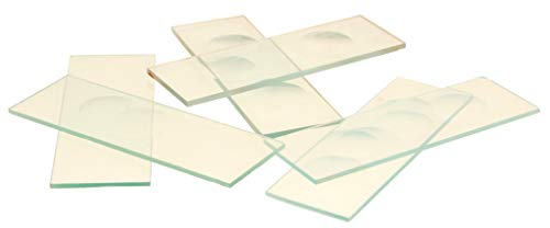 Eisco Labs Microscope Slides, with Single Concavity, Pack of 10