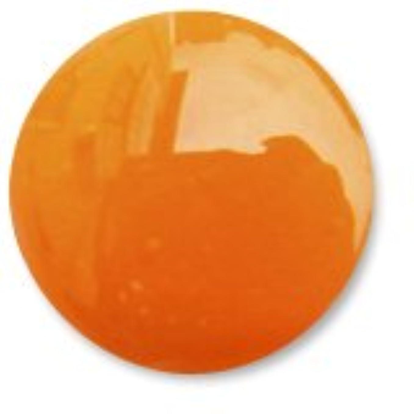 巨大な馬鹿げたブラウザ【ジェルネイル】Naility! ソークオフカラージェル マットオレンジ 3.5g