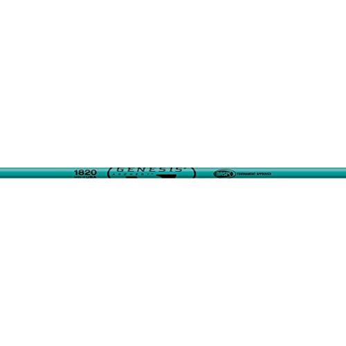 Easton Genesis V2 SHAFTS Teal 1820 1 DOZ.