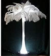 Special Sale Ostrich Feathers Wholesale Bulk 17/19