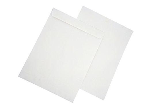 AmazonBasics Catalog Envelopes, Peel & Seal, 10 x 13 Inch, White, 100-Pack