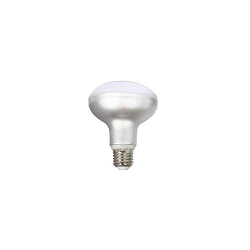 SILVER 999017 LED R90, 12 W, Gris, 1 Unidad (Paquete de 1)