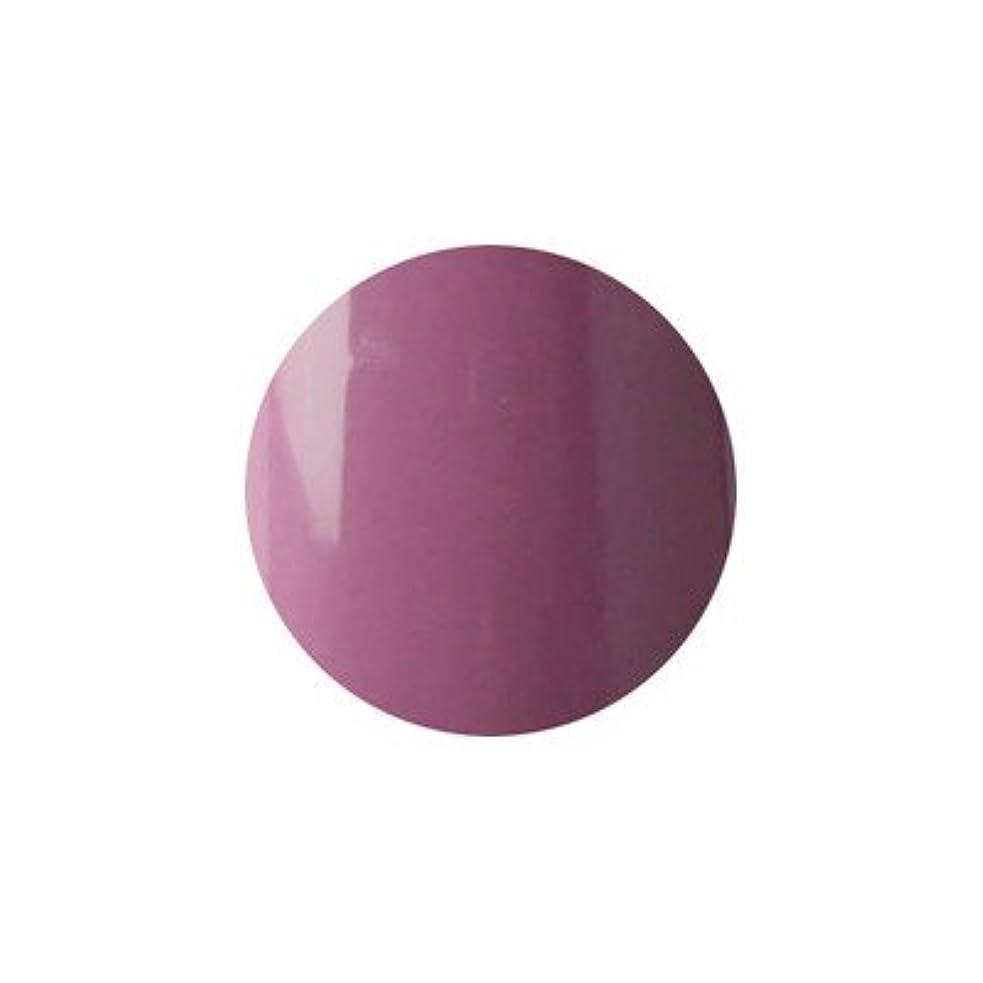 カプラーすることになっている変色するアイスジェル カラージェル UR-396 3g