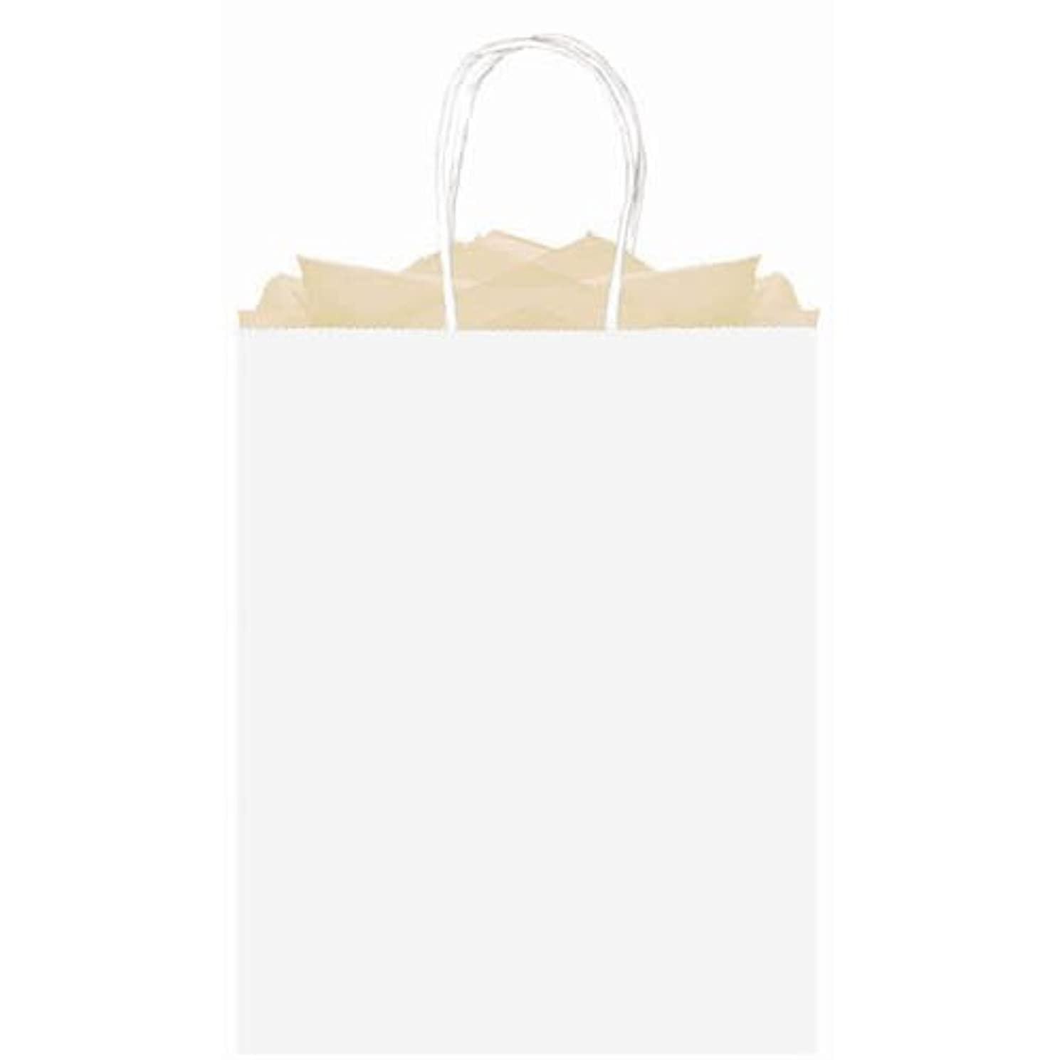 amscan Party Friendly Plain Large Kraft Bag, White, 15 3/4