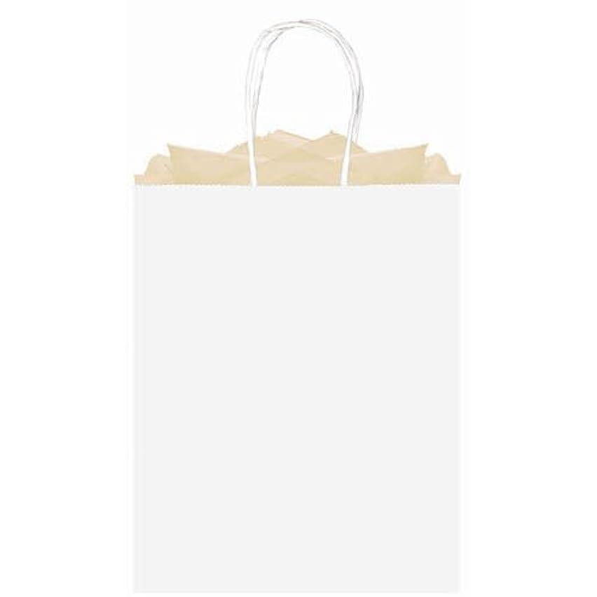 amscan Party Friendly Plain Large Kraft Bag, White, 15 3/4