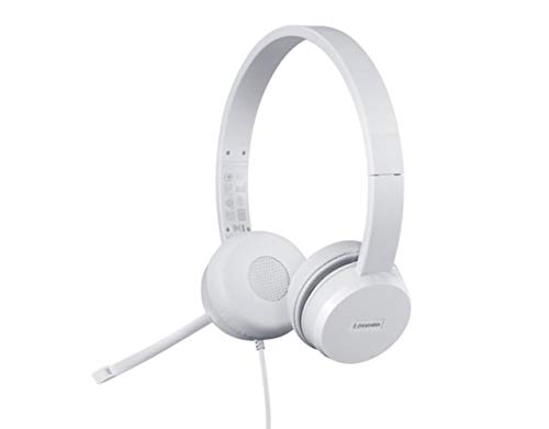 Lenovo 110 USB Stereo Headset, Noise Canceling, Adjustable Boom Mic for Right/Left Ear, Long Cable, Works with Chromebook, GXD1B67867, Silver