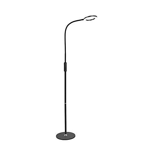Floor GZL staande lamp, staande lamp Up Light, staande lamp Daylight, LED booglampen USB voor woonkamer (15 W vloerlamp ijzeren plaat)