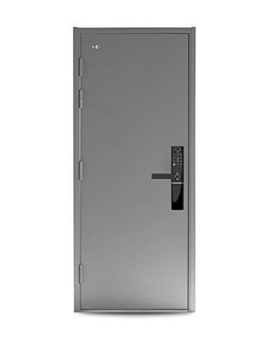 VIZ-PRO Quick Mount Steel Security Door with Smart Lock, Remote Control, Gray Left Side-Hinged Inward, 36