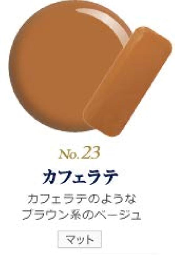規則性セマフォ慢性的発色抜群 削らなくてもオフが出来る 新グレースジェルカラーNo.11~No.209 (カフェラテ)