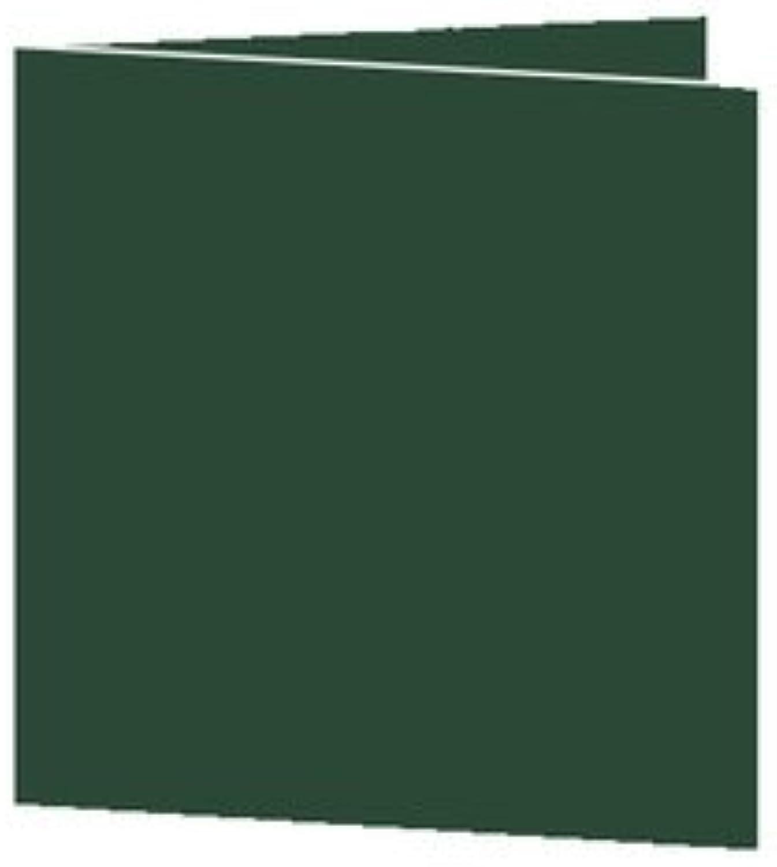50 Stück    Artoz Serie Serie Serie 1001 Doppelkarten gerippt    Quadratisch, 260 x 130mm, hochwertig, racing Grün B002JJCU4O | Hohe Qualität und günstig  e85970