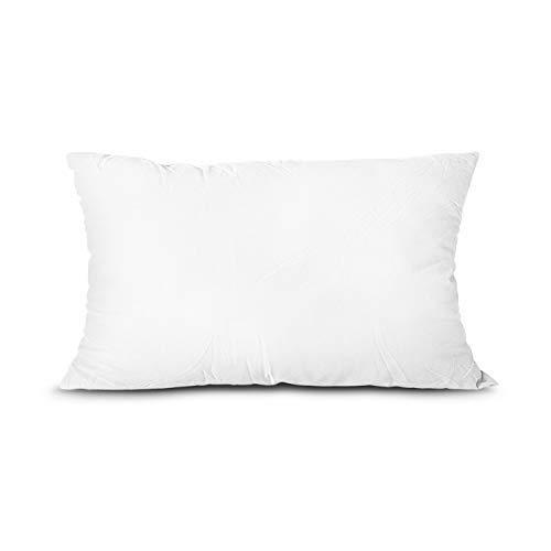 Edow Throw Pillow Insert, Lightweight?Soft Polyester Down Alternative Decorative Pillow, Sham Stuffer, Machine Washable. (White, 12x20)