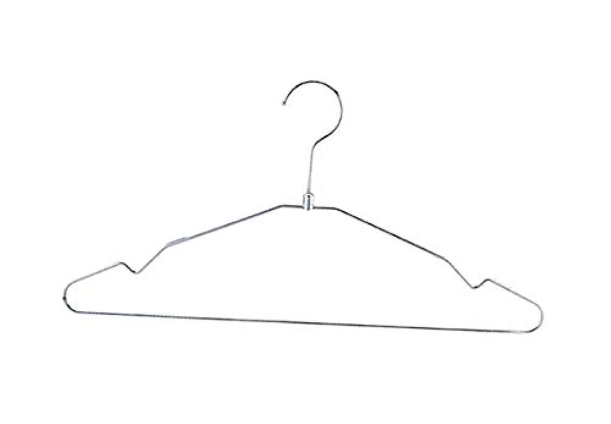 ディレクター破壊的浸透するアズワン スチール製ハンガー クロームW38cm 10本/61-7229-76