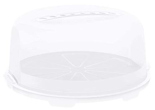 Rotho Fresh, campana de alta torta con capucha y asa de transporte, Plástico PP sin BPA, blanco, transparente, 35.5 x 34.5 x 16.5 cm