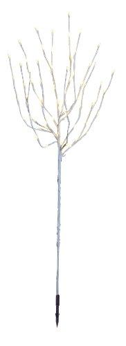 Star 860-18 Tobby Tree, Branches 110 cm ca. 110 cm x 40 cm, 70 LED Blanc Chaud avec transformateur, extérieur, Carton