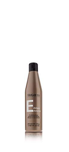 SALERM Cosmetics Shampooing Dandruff Caspa – 500 ml