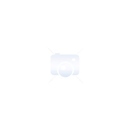 Nattou Schnullerkette aus Silikon und Holz für alle Modelle, BPA-frei, 27,5 x 3,3 x 23 cm, Blau