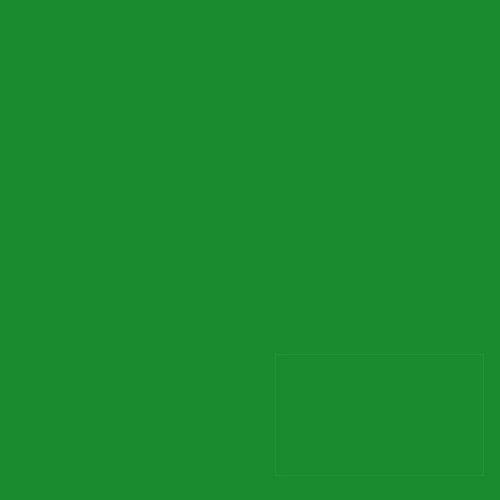 アサヒペン 水性蛍光塗料 グリーン25ml