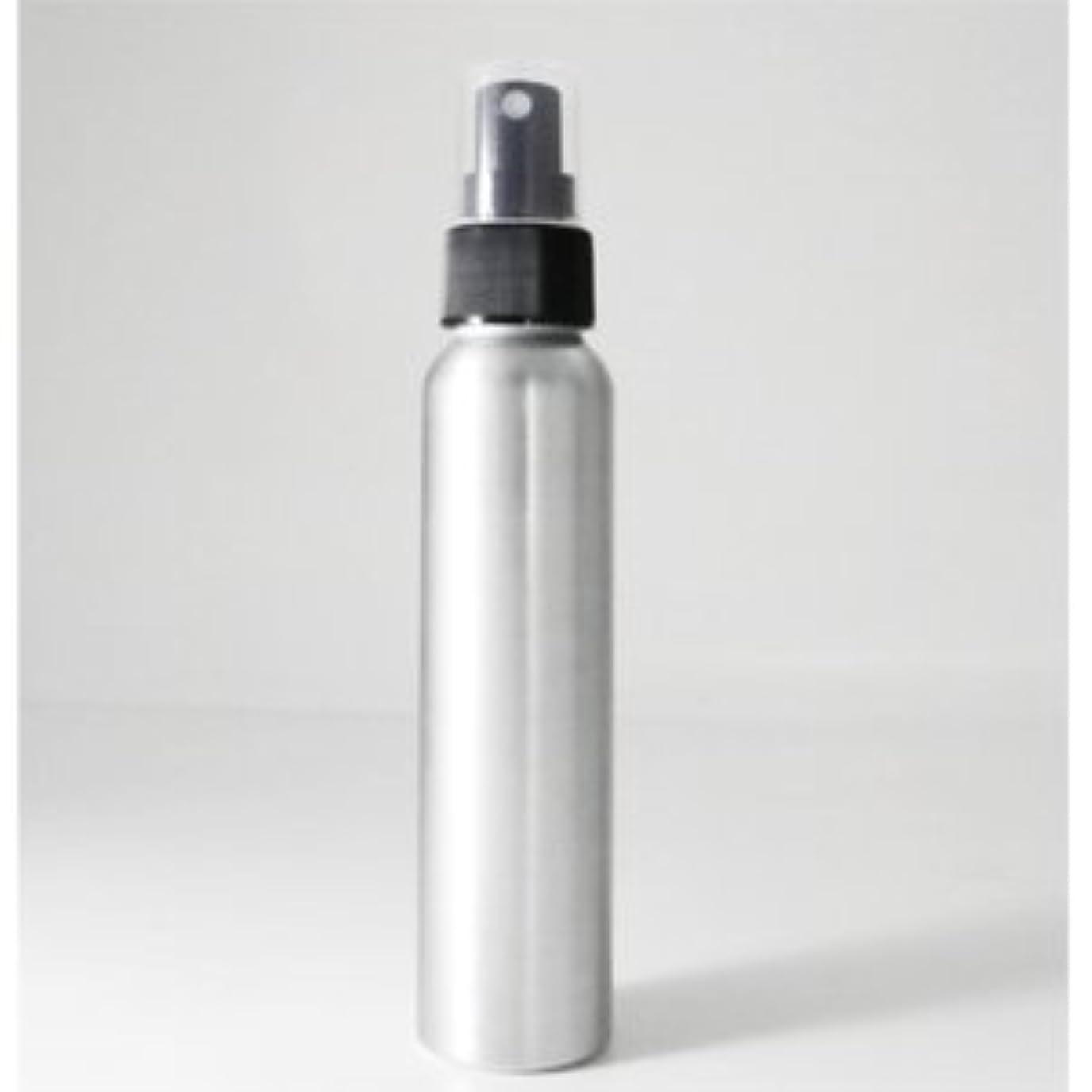 試すゲージセグメントアルミボトル スプレー容器 100ml 【手作り化粧品容器】