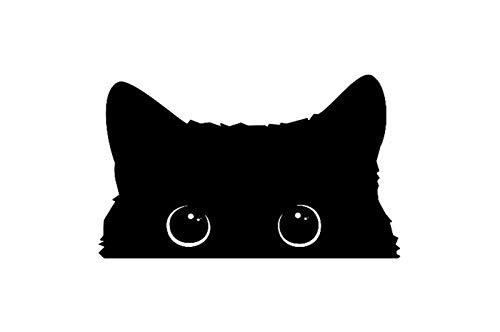 Accesorios de adhesivos de automóviles El gato pobre está robando con los...