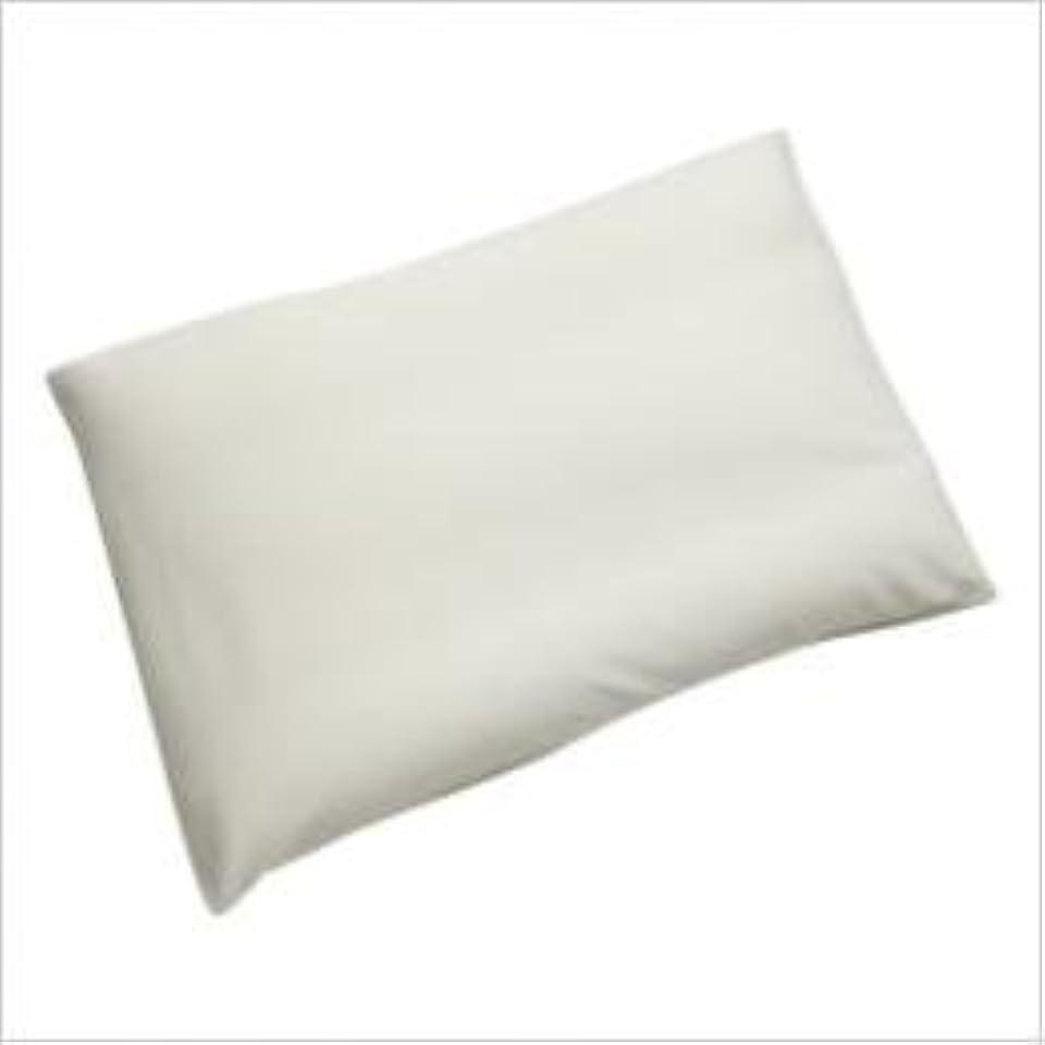 仲介者強盗降下《王様の枕 シリーズ》 王様の夢枕 エアロ クリーム (専用カバー付) W56×D40×H10cm 【王様のマルチ枕をプレゼント】