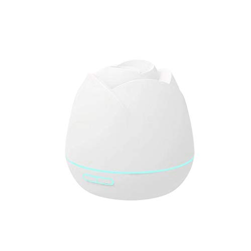 Lowest Price! BESTOUS Negative-ion Diffuser Aromatherapy Cool USB car Home Silent Mist Humidifier