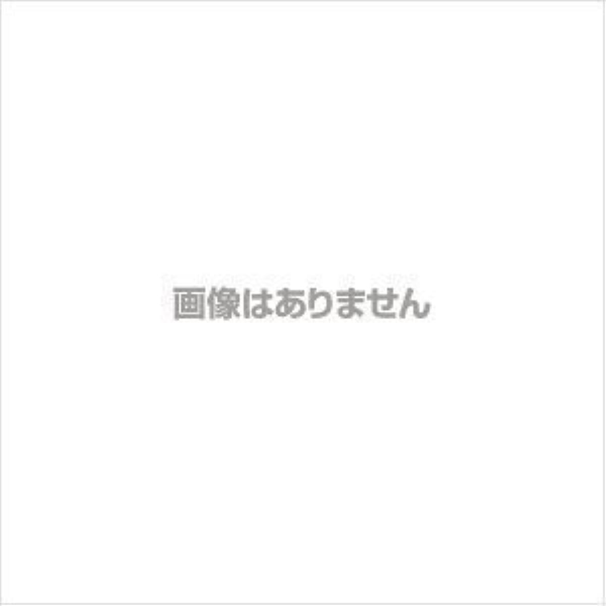 初期モノグラフ送信する(まとめ買い) 壽堂紙製品 コピー偽造防止用紙 01047 01047 【×3】
