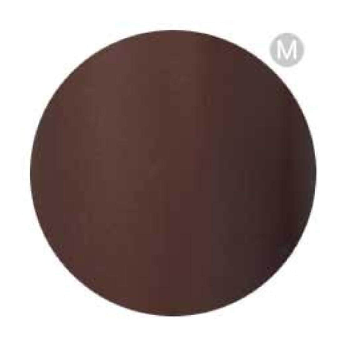 浴室特権的裏切りPalms Graceful カラージェル 3g 050 チョコレート