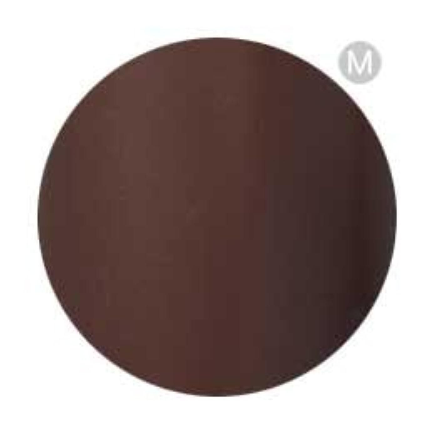 シャット理由解放するPalms Graceful カラージェル 3g 050 チョコレート