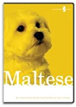 Maltese Dog Grooming Instructional How To DVD Video and Equipment Guide-Do It Yourself At Home